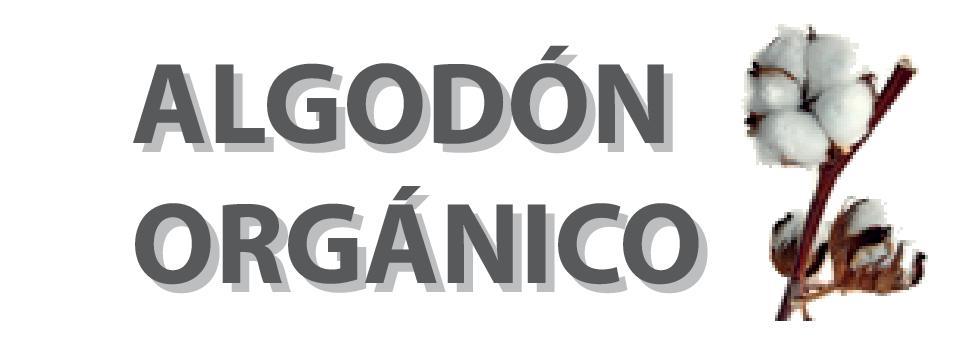 Algodón Organico Kacha