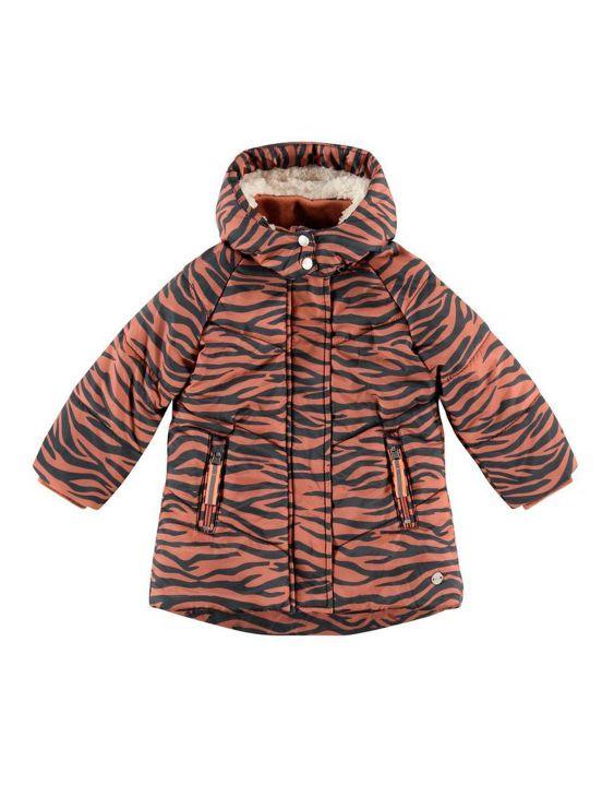 Zebra babyface jacketTeja